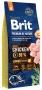 BRIT Premium By Nature Junior M 15 kg